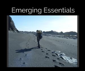 Emerging Leader Essentials