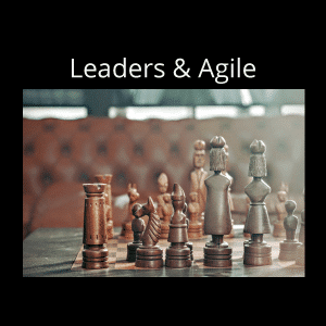 Agile for Leaders