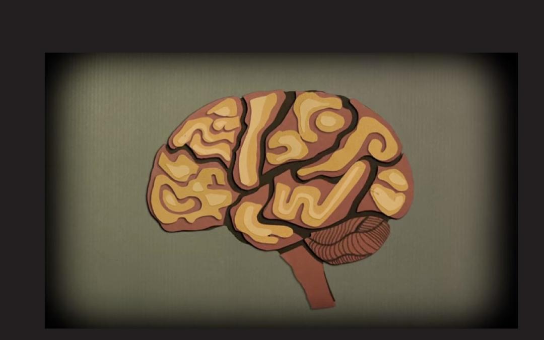 Brainstorming – Does It Work