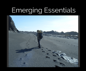 Emerging Leader Essentials